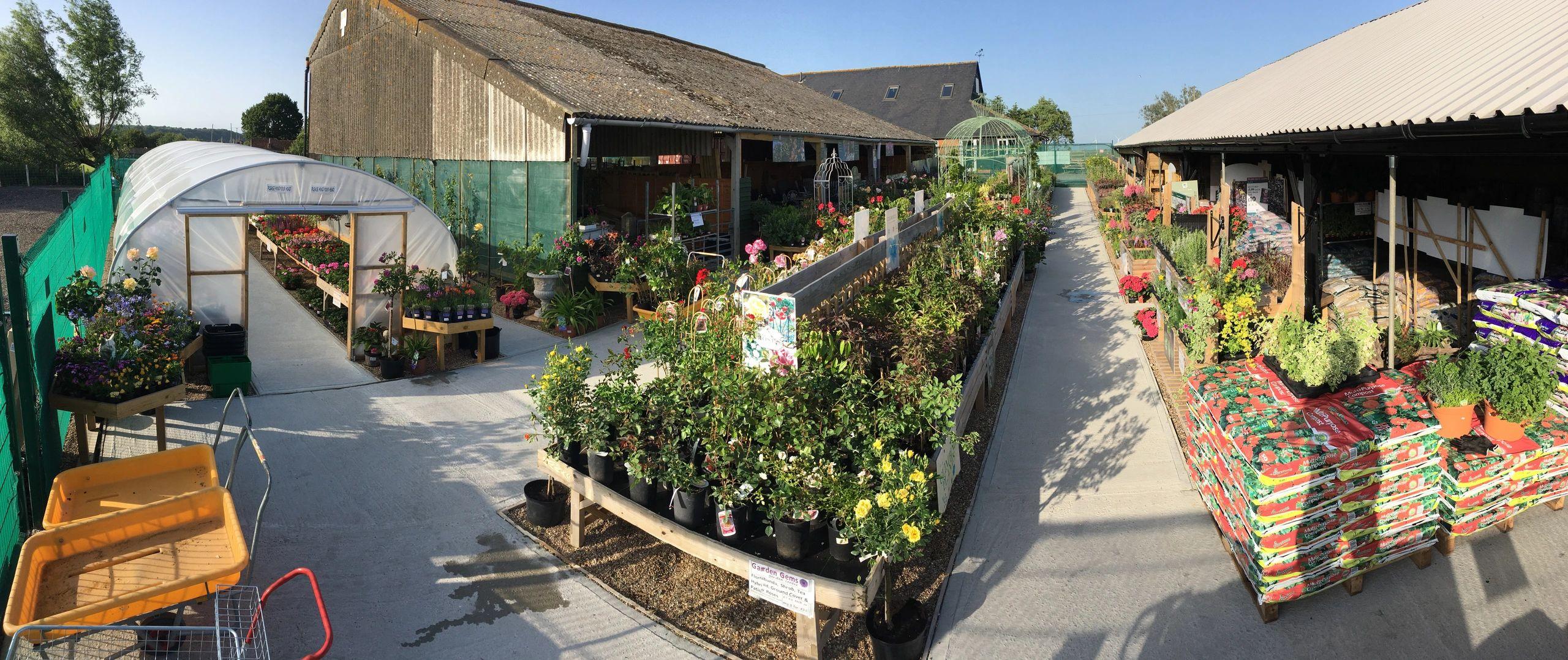 Fairlight East Sussex Garden Gems Plant Nursery Garden Centre