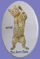 "Nue ""The Flirt"" Button/Magnet"