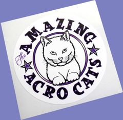 Amazing Acro-Cats Sticker!