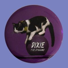 Dixie Button/Magnet