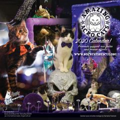2020 Acro-cats / Rock Cats Rescue Calendar