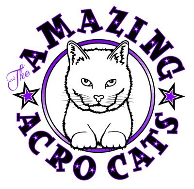 Rock Cats Rescue / The Amazing Acro-cats