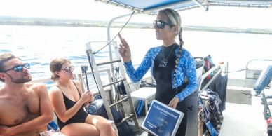 Ocean Ramsey on a One Ocean Diving Charter talking about ways you can help save sharks