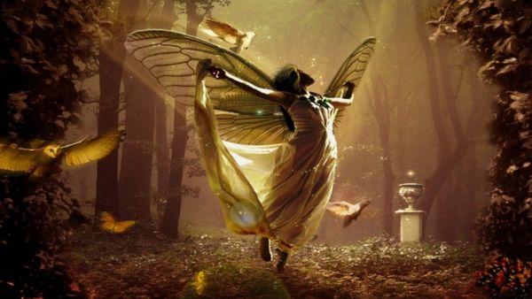 Fairy Dreamland
