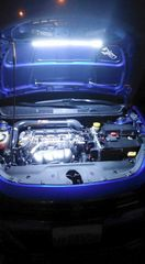 Engine bay work/accent light