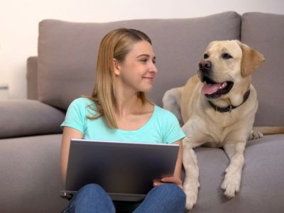 Dog behavior consultation in South Florida