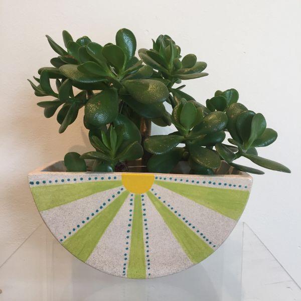 Tipster planter 1