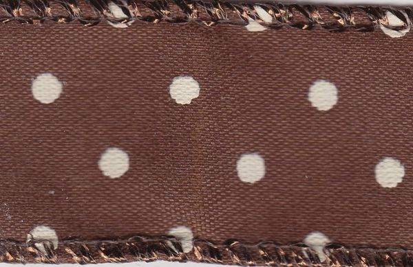 Celebrate It Ribbon 7/8 Inch Brown and White Polk a Dot Wired Edge Ribbon