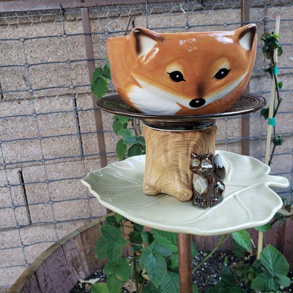 Fox n Friends