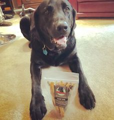 1 pack Halibut Dog Treats