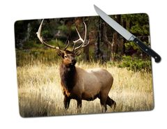 Elk Large Tempered Glass Cutting Board