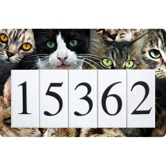 Cat Kitten Address Sign Large