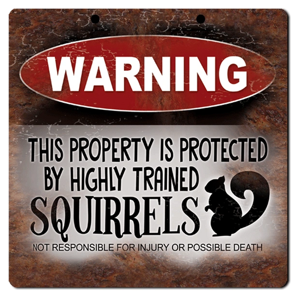 "Bayside Treasures Sign - 8"" x 8"" - Warning Property Protected by Squirrels"