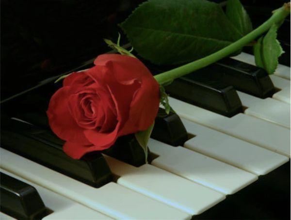 Sogno d'Amore (Digital)