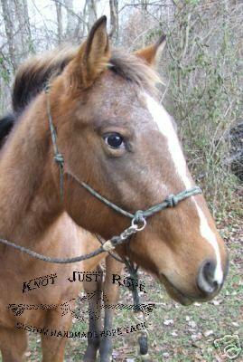 O-ring Natural Horsemanship Rope Halter