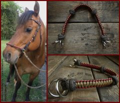 Bitless Sidepull Noseband Attachment
