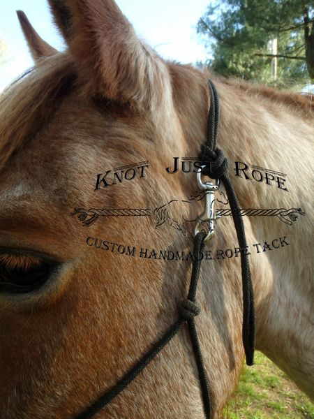 Rope Halter Snap