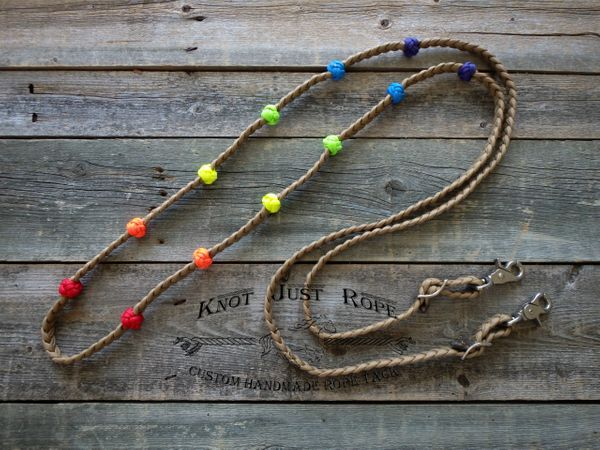 Braided Rainbow Lesson Training Reins