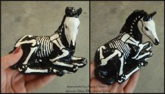 Painted Raven The Skeleton Horse Model- laying down