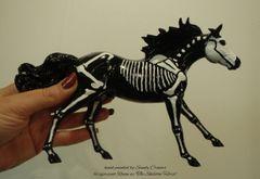 Painted Raven The Skeleton Horse Model- #3b