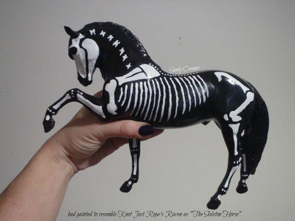 Painted Raven The Skeleton Horse Model- #4b