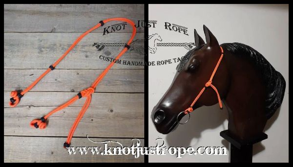 EZ Quick Change Rope Headstall Bridle