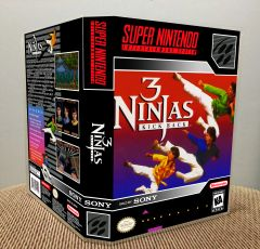 3 Ninjas Kick Back SNES Game Case with Internal Artwork