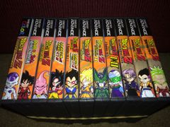 Dragon Ball Z 11 Case Gameboy Lot WITH CUSTOM SPINE!