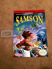 Little Samson Poster (18x12 in)