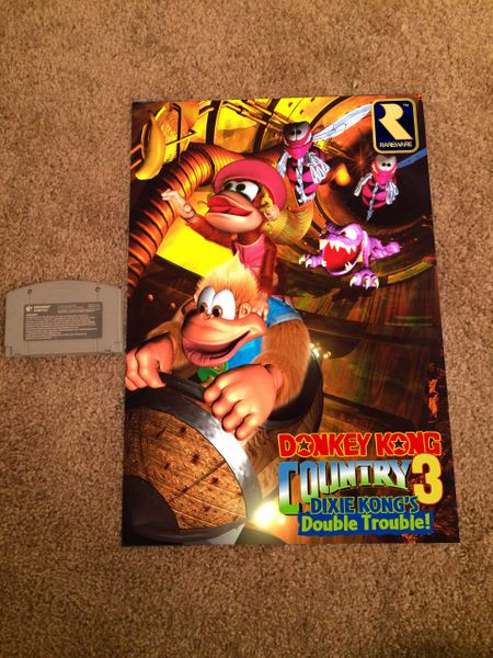 Donkey Kong Country 3 Poster (18x12 in)