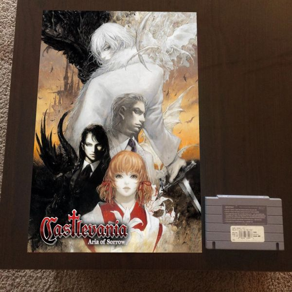 Castlevania Aria of Sorrow Poster (18x12 in)