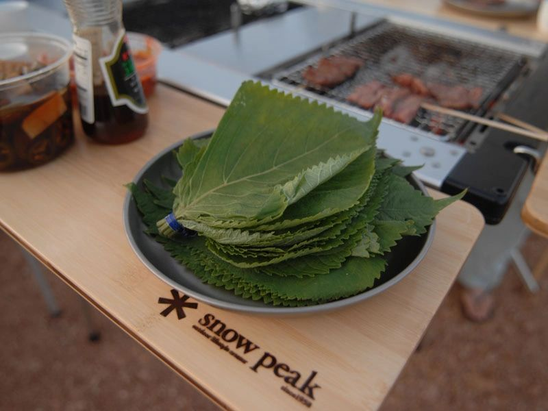 korean perilla leaves snow peak titanium plate IGT slide top half iron grill table single bbq box