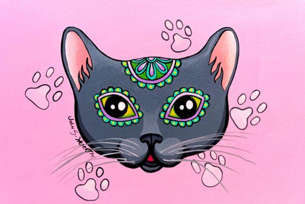 Gray sugarskull cat