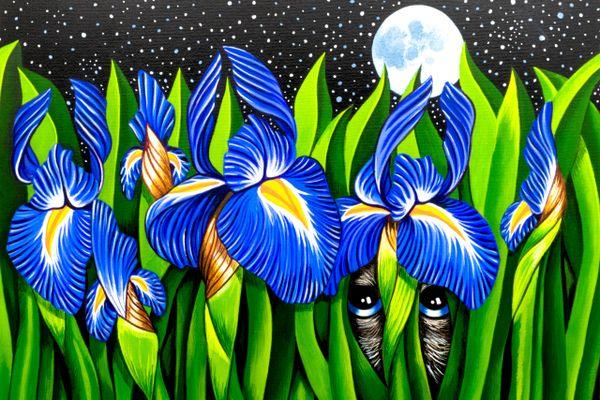 Irises in the moonlight