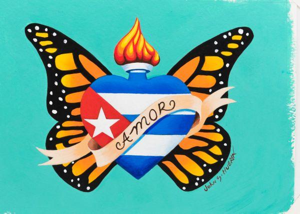 Cuban Flag butterfly