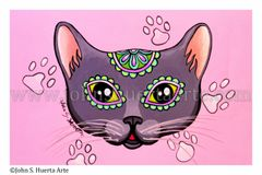 Gray sugarskull cat