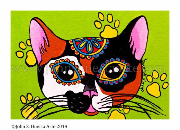 Calico sugarskull cat