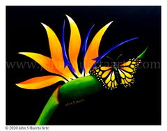Bird of paradise with monarch butterfly