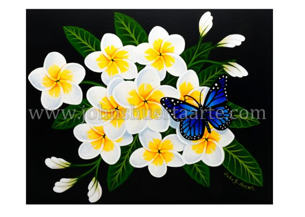 White Plumeria with blue butterfly art greeting card