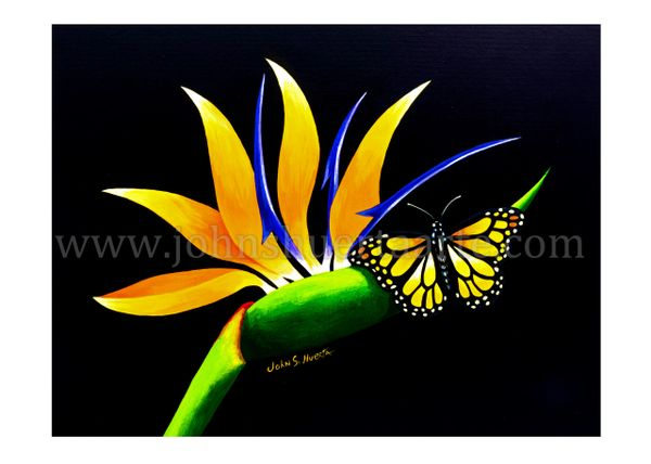 Bird of paradise with monarch butterfly art greeting card