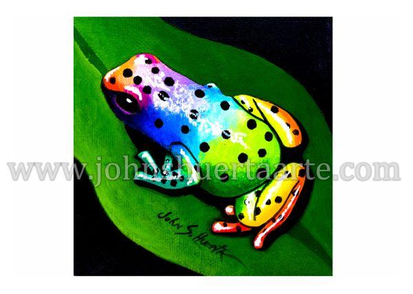 Rainbow Tree Frog