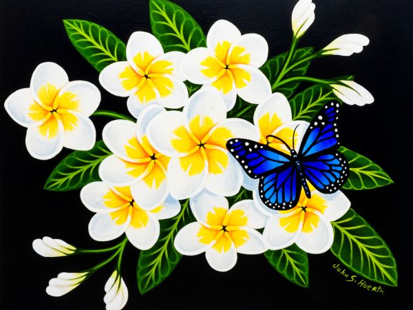 White plumeria with blue butterfly