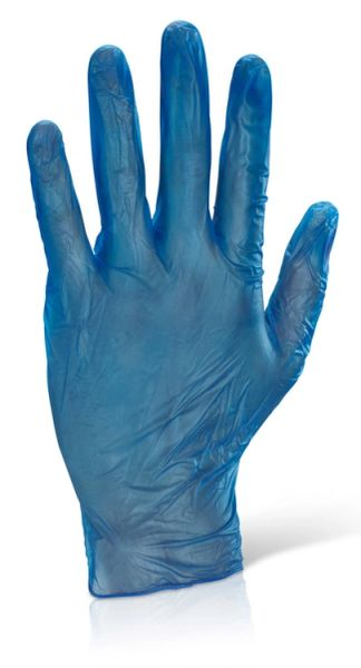 Powder Free Vinyl Disposable Gloves (100 pieces)