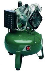 Single Head 2 cylinder Oilless Compressor (Cattani)