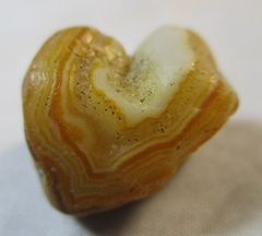 Orange Heart Fairburn Agate from South Dakota
