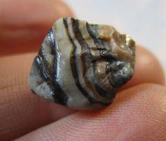 Tiny Colletion Jewlery Ready Fairburn Agate from South Dakota