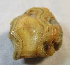 Fairburn Agate from South Dakota #JW224