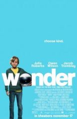 Wonder Movie Poster 27x40 - Theater Original - Double Sided #T15