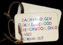 PERSONALIZED KIDS LUGGAGE TAGS- SET OF 2