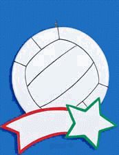 Volleyball Personalized Ornament